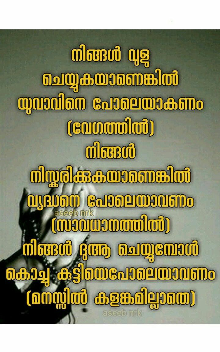 Pin By Aseeb Asb On സർഗ ത മക ച ന തകൾ Islamic Quotes Malayalam Quotes Quotes