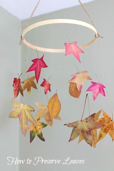 A fun fall activity for kids! (Preserving Leaves with Glycerin and Wax Paper)~ BuggyandBuddy.com