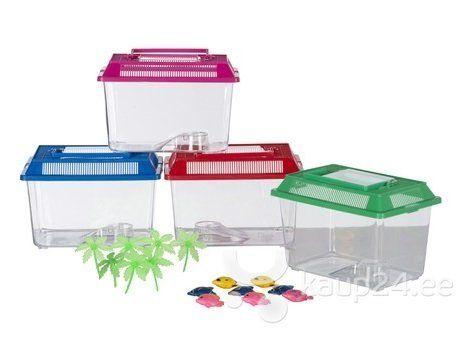 Akvaarium plastikust 27,5 x 17 x 15 cm, erinevad värvid hind ja info | Akvaariumid ja seadmed | kaup24.ee