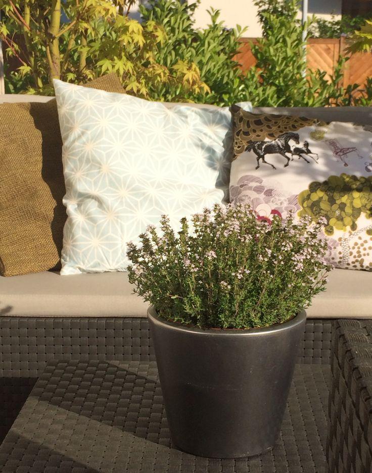 Ma terrasse rez de jardin en ville