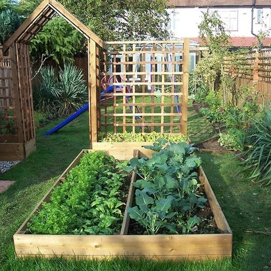 Unique Raised Bed Garden Ideas: Best 25+ Backyard Vegetable Gardens Ideas On Pinterest