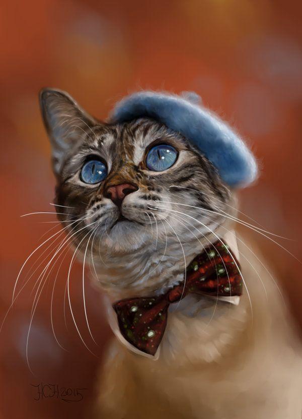 Прикольные картинки котики на аву, разрешение открытки открытка