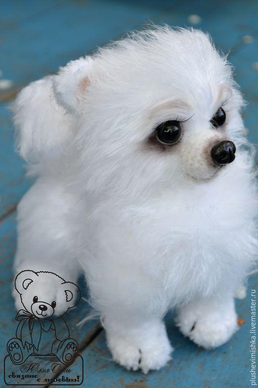 Купить Франк. Шпиц - белый, шпиц, собака, собачка, собаки, собака игрушка, собачки, щенок