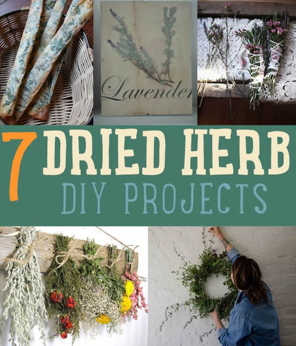 DIYREADY.com is bringing you tutorials on herb drying techniques herbs herb drying how to dry herbs herb storage and DIY crafts using dried herbs   diyready.com/diy-projects-things-you-can-make-using-dried-herbs/