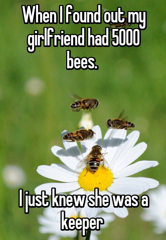 """When I found out my girlfriend had 5000 bees.       I just knew she was a keeper """