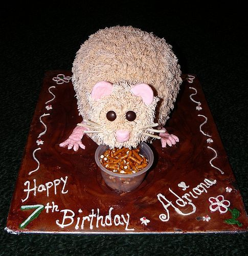 Best Images About Birthday Cakes On Pinterest  Year Olds - Hamster birthday cake