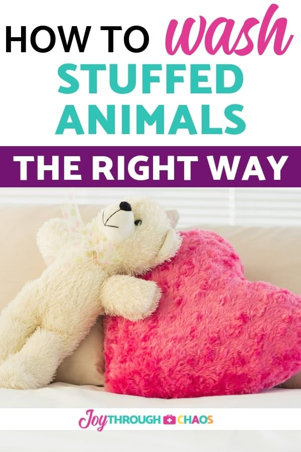 Can You Wash Stuffed Animals In The Washing Machine How To Wash Stuffed Animals Washing Stuffed Animals Clean Stuffed Animals Animals For Kids