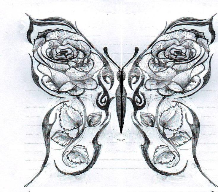 Butterfly and rose drawing - photo#6