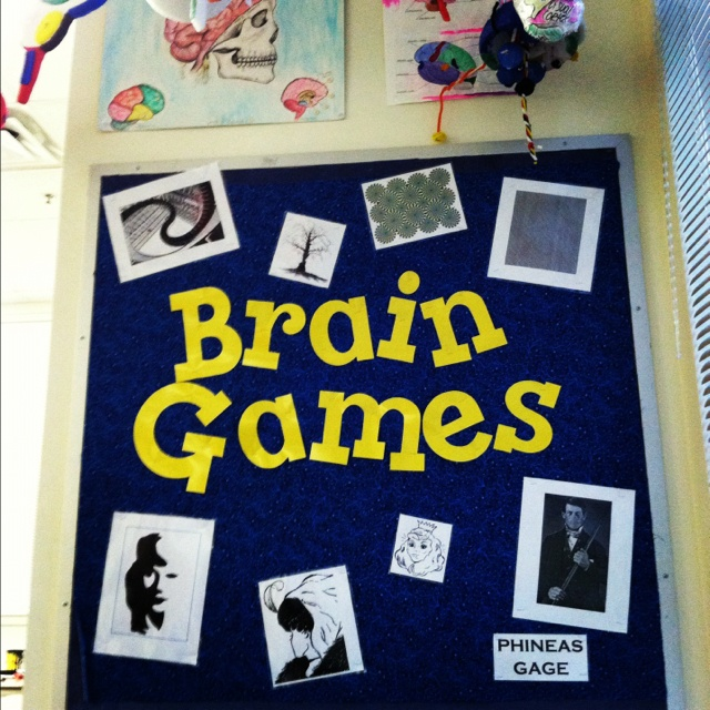 Classroom Design Psychology ~ Part of my brain corner in psychology classroom all