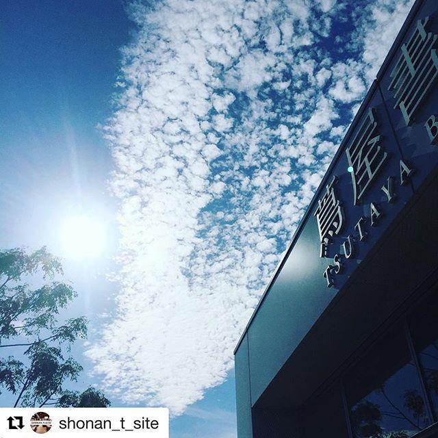 #Repost @shonan_t_site 空が高く、秋らしい気持ちのいい天気。朝から何度も空を見上げていたら、うろこ雲が広がっていました。 自然の風景は一期一会。青空のキャンバスに描かれる雲を眺めることも『芸術の秋』かもしれませんね。 テラス席でコーヒー片手に、秋の空を眺めませんか? #イマソラ #空 #秋空 #雲 #うろこ雲 #湘南TSITE #湘南 #TSITE #tsite #蔦屋書店 #蔦屋 #TSUTAYA #スターバックス #藤沢 #辻堂 #江ノ島 #鎌倉