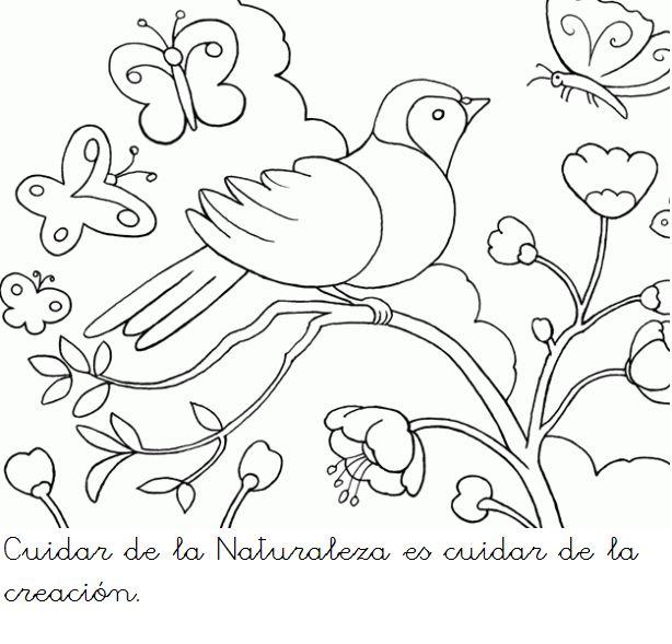 Imagenes Para Colorear De La Creacion De Dios Laminas De La Biblia