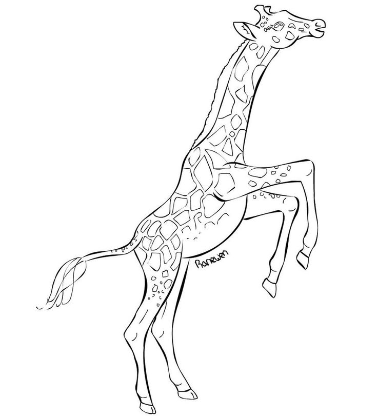 Free Printable Giraffe Coloring Pages For Kids | Giraffe ...