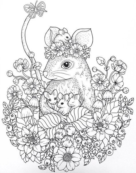 1503 best Adult Coloring pages\ideas images on Pinterest