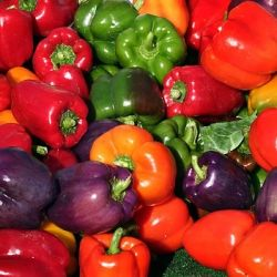 17 best images about pepper types on pinterest - Best romanian pepper cultivars ...