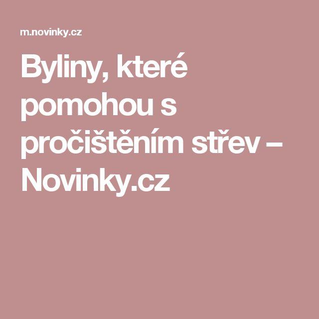 Byliny, které pomohou s pročištěním střev– Novinky.cz