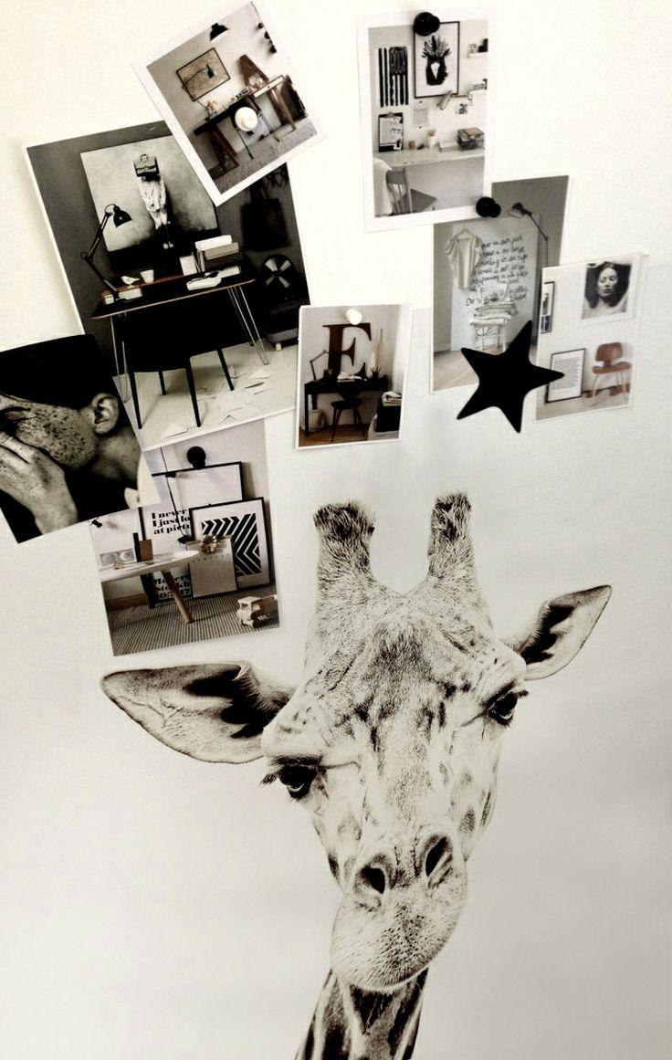 Wallpaper Magnet Giraffe