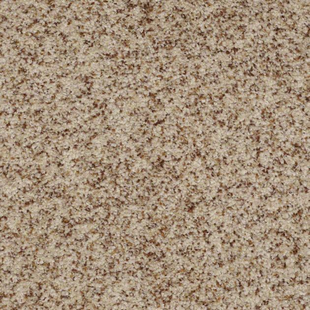 Durable Carpeting For Bedrooms And Living Room In A Taupe Neutral Color To Accommodate High