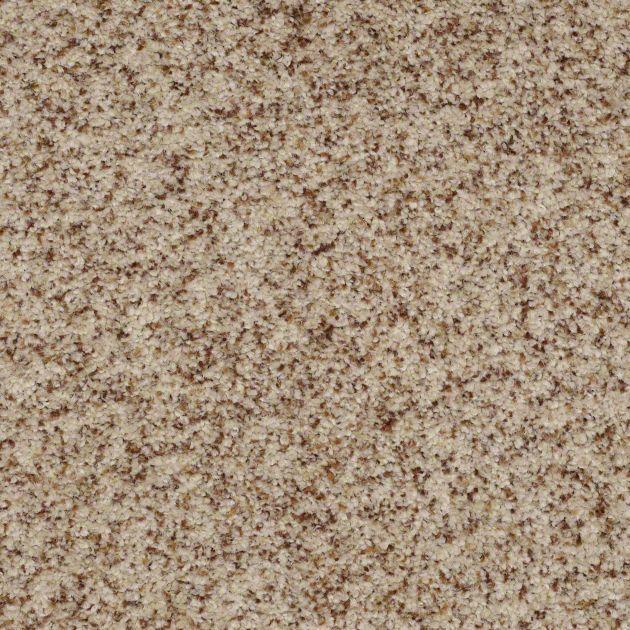 9 best Shaw Carpet