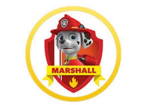 Paw-Patrol-Action-Figure-Pup-amp-Badge-Figure-Transforming-Marshall-EMT-Back-Pack