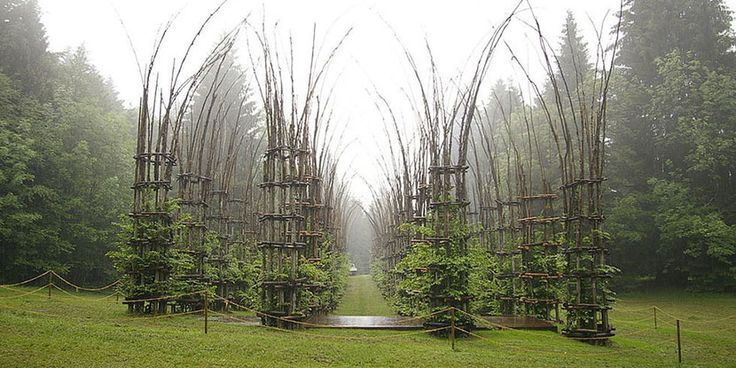 La Cattedrale Vegetale, arte en Trento - http://www.absolutitalia.com/la-cattedrale-vegetale-arte-trento/