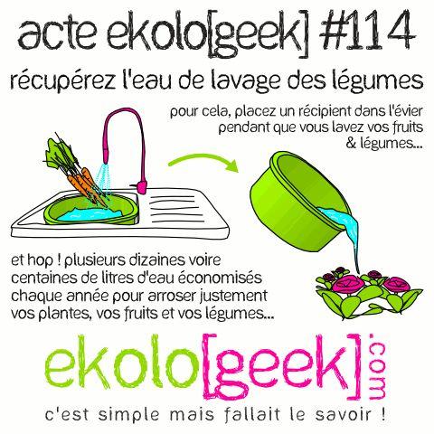 Acte ekolo[geek] #114 - Récupérer l'eau de lavage des légumes. Pour cela, placez un récipient dans l'évier pendant que vous lavez vos fruits & légumes. Et hop ! Plusieurs dizaines voire centaines de litres d'eau économisés chaque année pour arroser justement vos plantes, vos fruits et vos légumes... - Ekolo[geek].com - C'est simple, mais fallait le savoir.