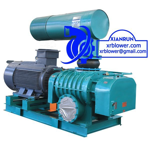Roots Blower Structure by Xianrun Blower, check www.lxrfan.com, xrblower.com, xrblower@gmail.com, including casing, wallboard, roots blowers impeller, silencer, safety valve, back-pressure valve, pressure relief valve, sound proof enclosures