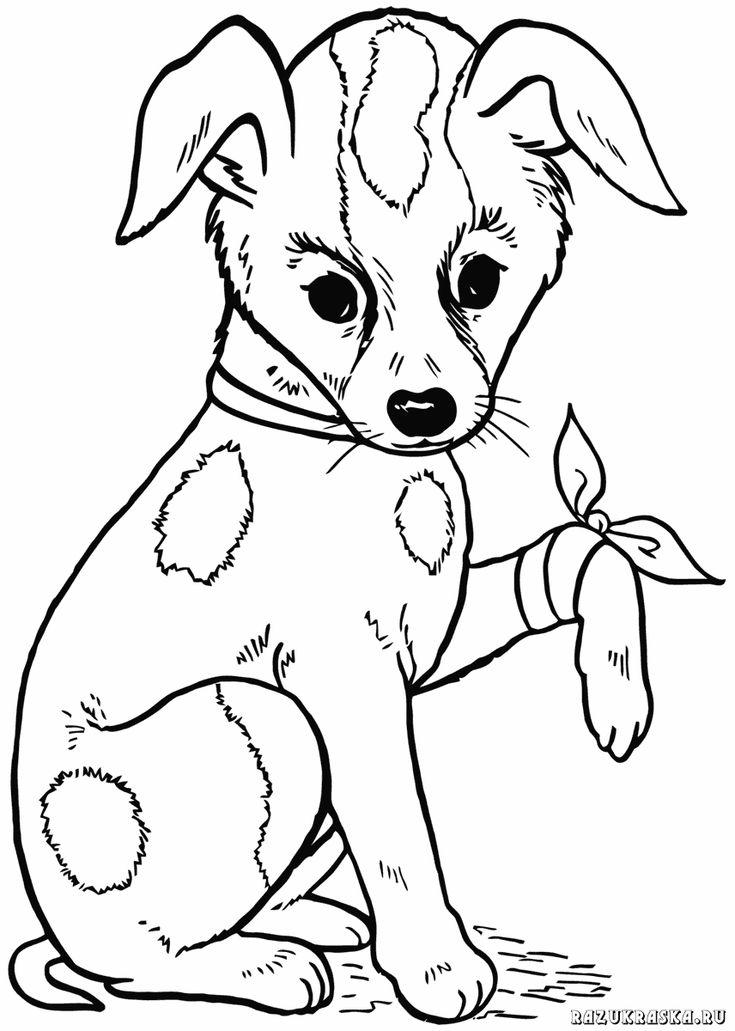 ausmalbilder-hunde-dekoking-com-22 | dog coloring page
