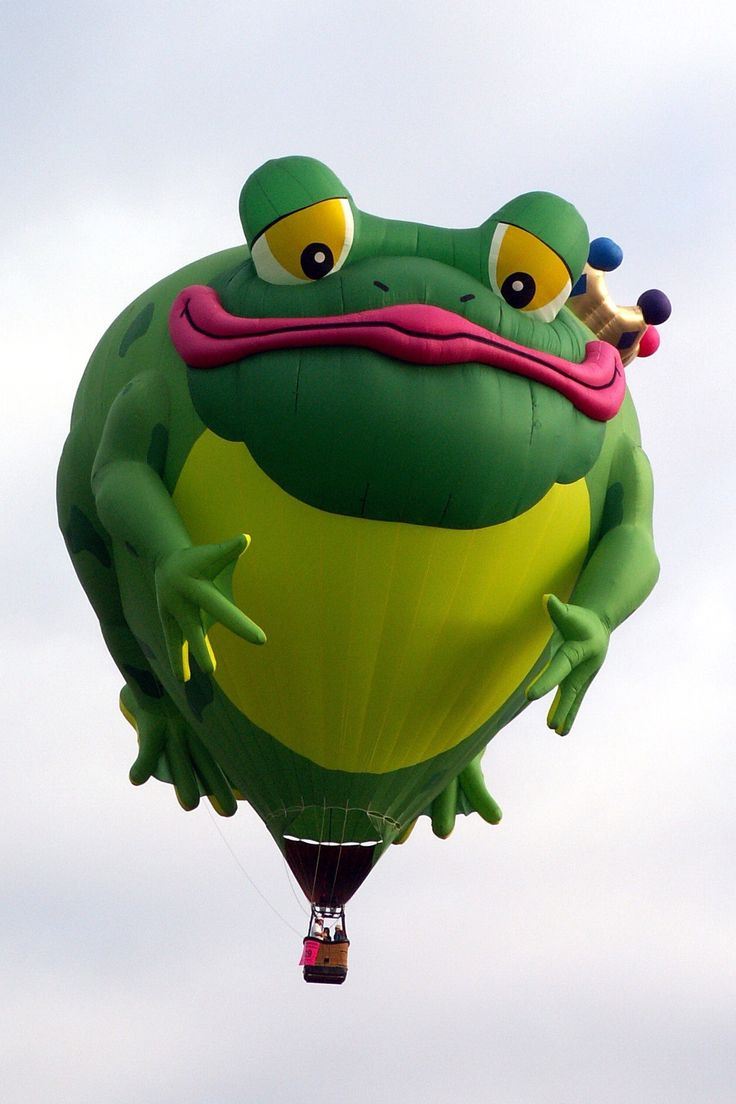 Omg......I must ride in this Frog Prince hot air balloon