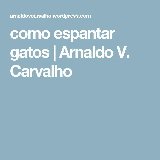 como espantar gatos | Arnaldo V. Carvalho