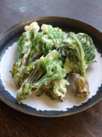 """【画像は、ほろ苦さと独特の芳香がたまらない美味しさの""""タラの芽の天ぷら""""。】"""