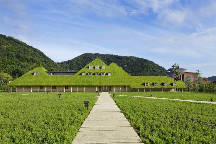 建築と自然の関係性を取り戻す、建築家・藤森照信氏の個展が開催 | ROOMIE(ルーミー)
