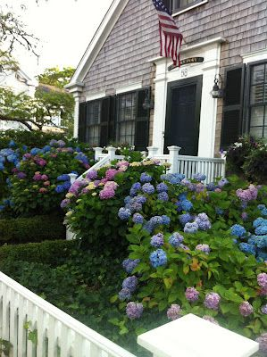 Cozy cottage ala Nantucket style-Flowers all over the island filling the air with their fragrance.
