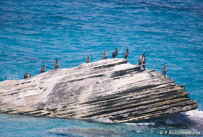 Leipsoi island