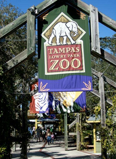 Lowry Park Zoo - Tampa, Florida