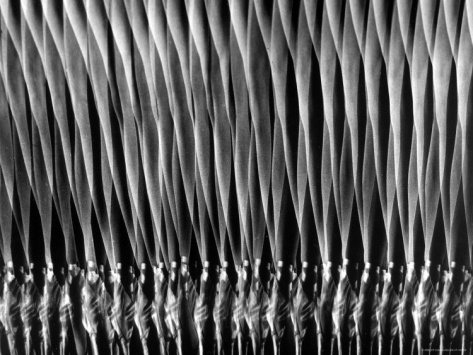 Stroboscopic study of ballerina en pointe by gjon mili