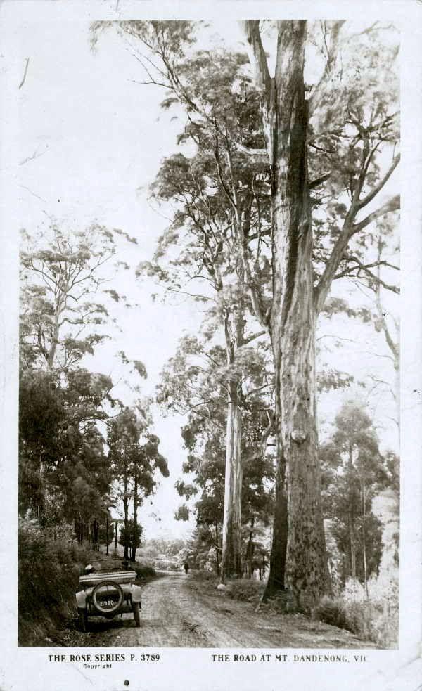 Mt Dandenong road