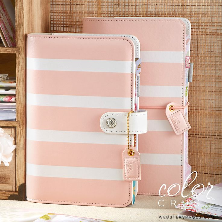 Blush Stripe Personal Planner Kit (In Stock) Webster's Pages Color Crush • FREE WASHI TAPE