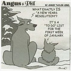 New Years Humor ~ Dog & Cat