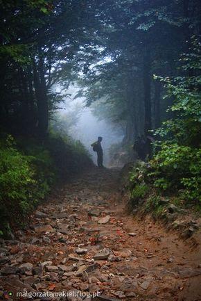 Bieszczady... foggy day, Poland