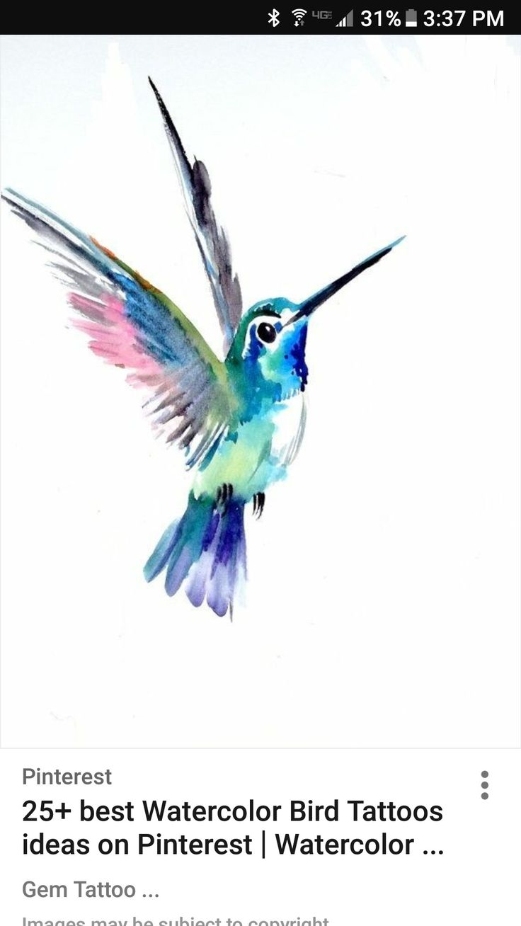 Pin by Vaishali on Watercolor paintings easy Watercolor