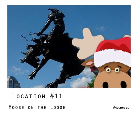 Know where #MDCMoose is? WIN a 2016 holiday ornament by entering the Moose on the Loose! Contest
