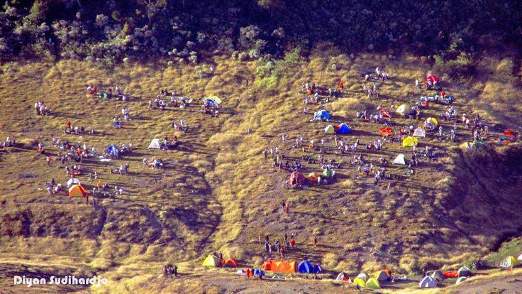 Surya Kencana, nge-camp