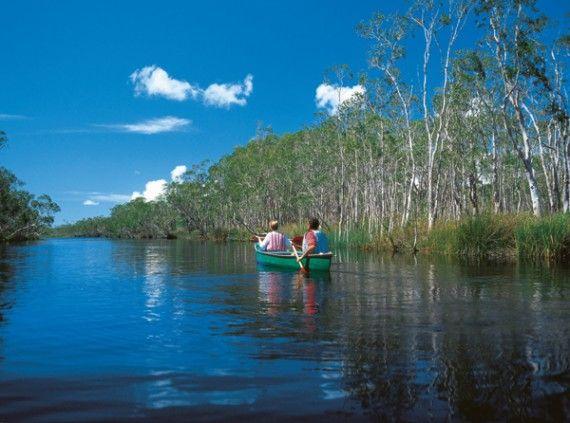 Noosa Everglades, Sunshine Coast, Queensland, Australia