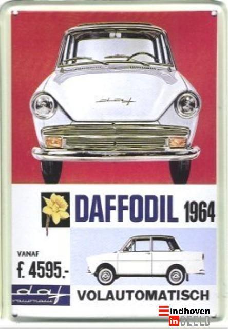 DAFFODIL 1964 - eindhoveninbeeld.com