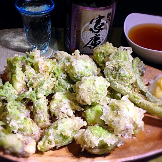こごみ、ふきのとう、たらの芽の天ぷら、どーんっ - 132件のもぐもぐ - 一足お先の春山菜天ぷら by kedent17