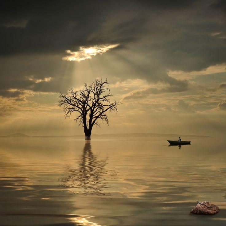 AloneCara Ionut, Art Fb, Photos Manipulation, Serenity, Digital Art, My Heart, Cara Ionit, Inspiration Art, Amazing Photos