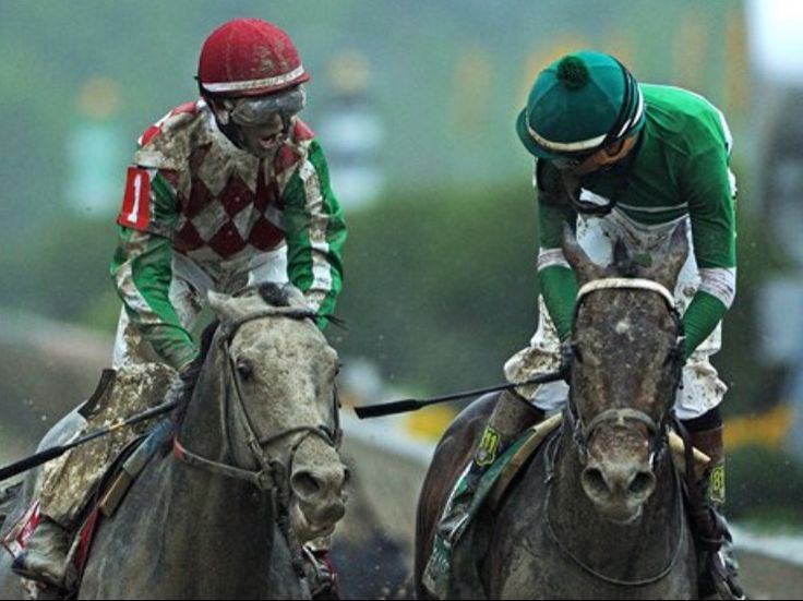 Cherry Wine and Exaggerator after the Preakness 2016.  Cherry Wine edged Kentucky Derby winner Nyquist for second.