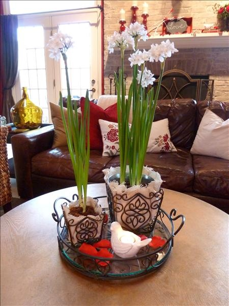 A Winter Valentine Centerpiece with products from www.imagine.willowhouse.com  DESCRIPTION:  Jamestown Tray and Rosedale Plant Holders