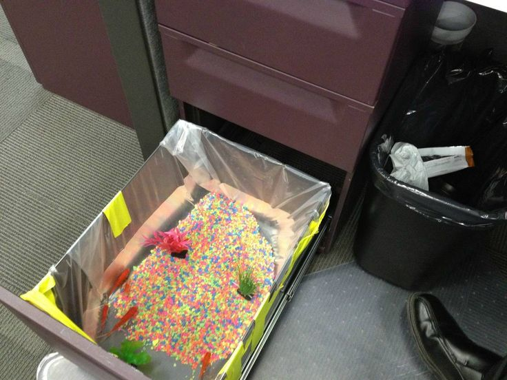 17 Easy April Fools' Day Pranks To Play On Your Friends: fill a desk drawer with a fish tank!