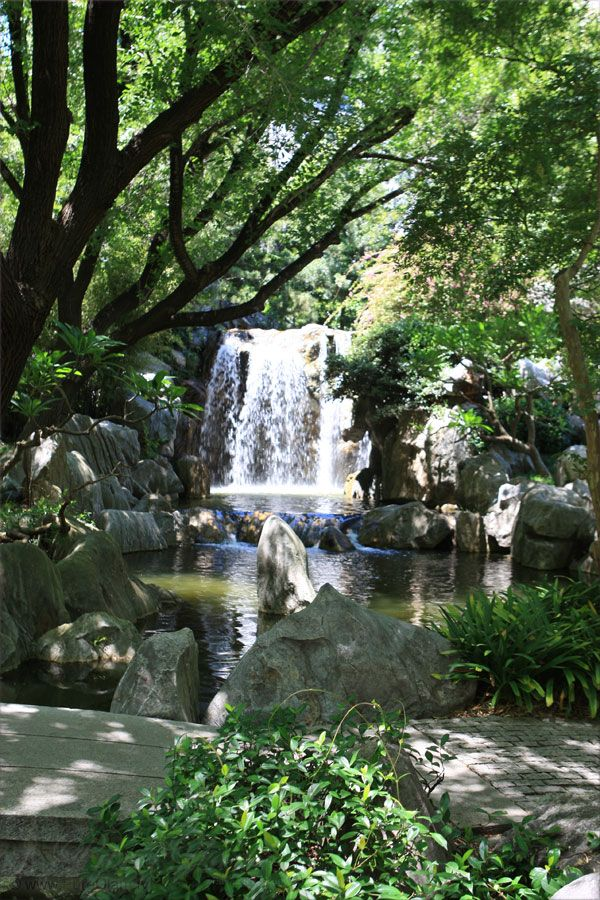 Beautiful Chinese Garden of Friendship – moments of Asia - Sydney, New South Wales, Australia